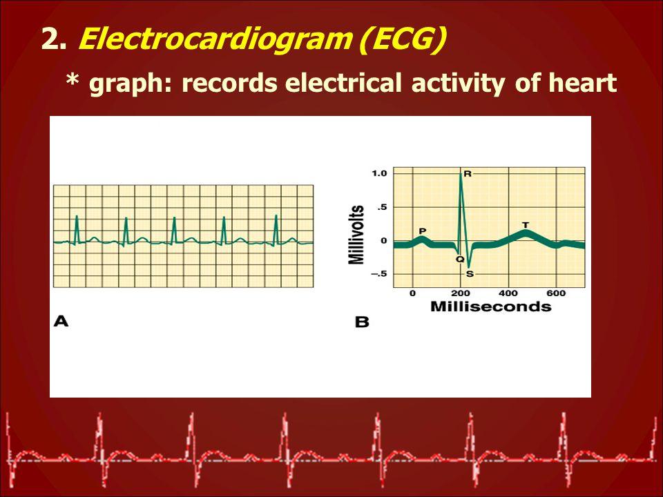 2. Electrocardiogram (ECG) * graph: records electrical activity of heart