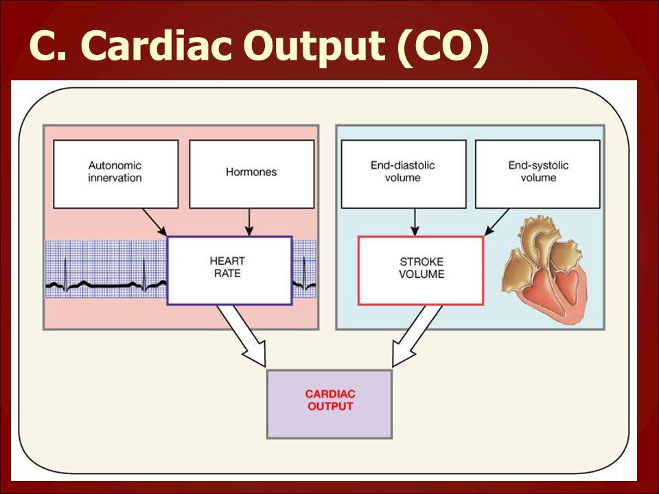 C. Cardiac Output (CO)