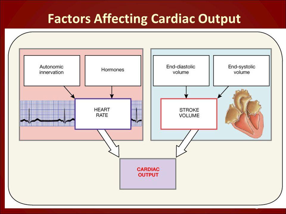 Factors Affecting Cardiac Output Figure 20.20