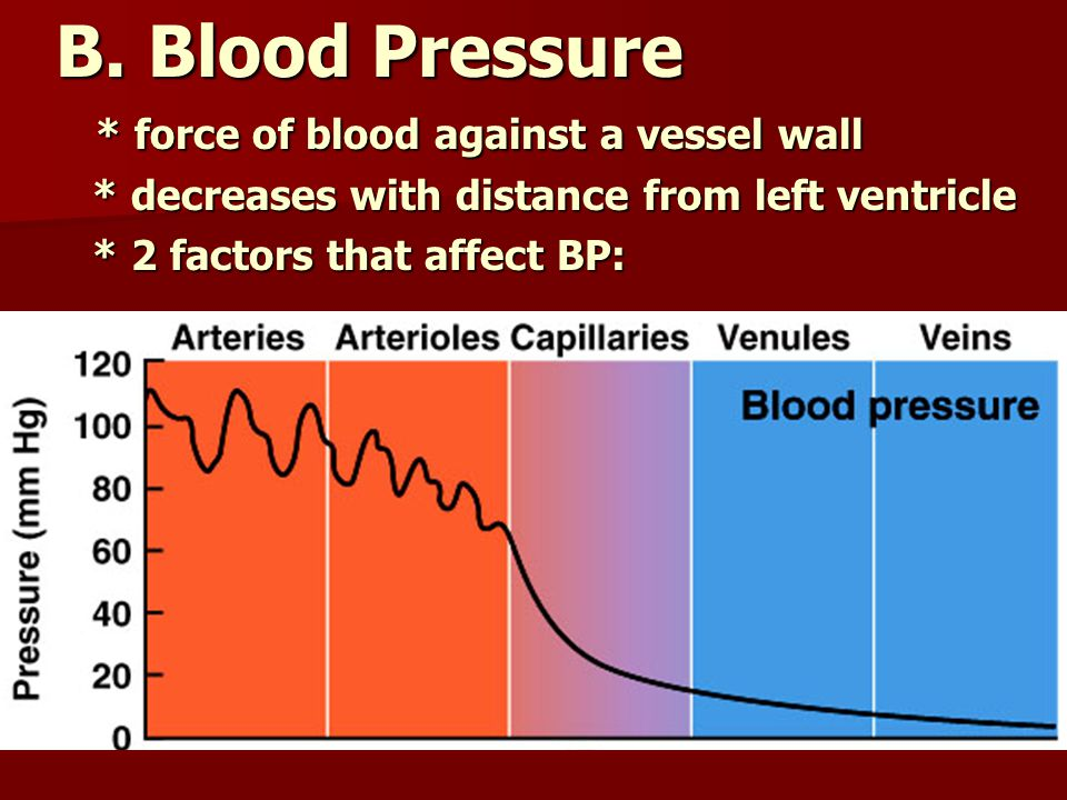 B. Blood Pressure * force of blood against a vessel wall * force of blood against a vessel wall * decreases with distance from left ventricle * decrea