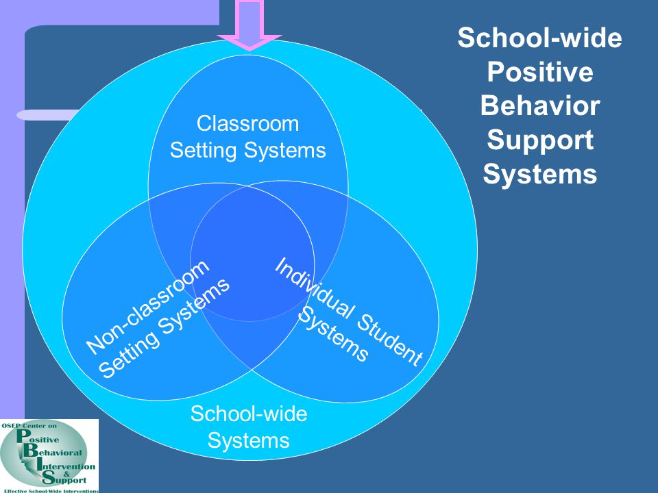 School-wide Positive Behavior Support Systems Non-classroom Setting Systems Classroom Setting Systems Individual Student Systems School-wide Systems