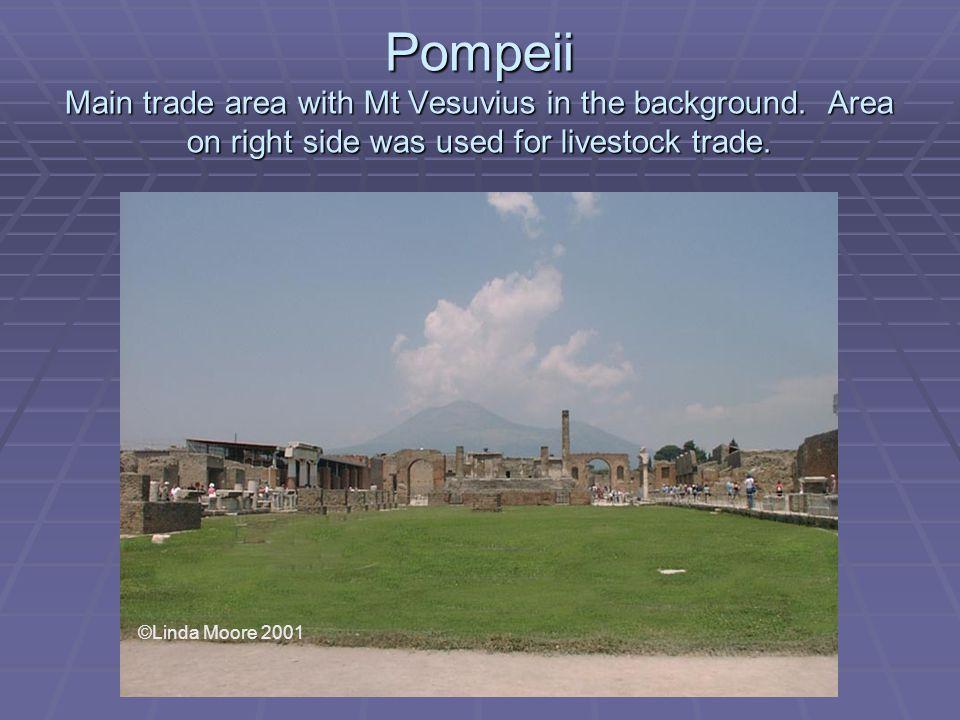 Pompeii Main trade area with Mt Vesuvius in the background.