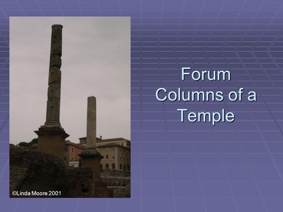 Forum Columns of a Temple ©Linda Moore 2001