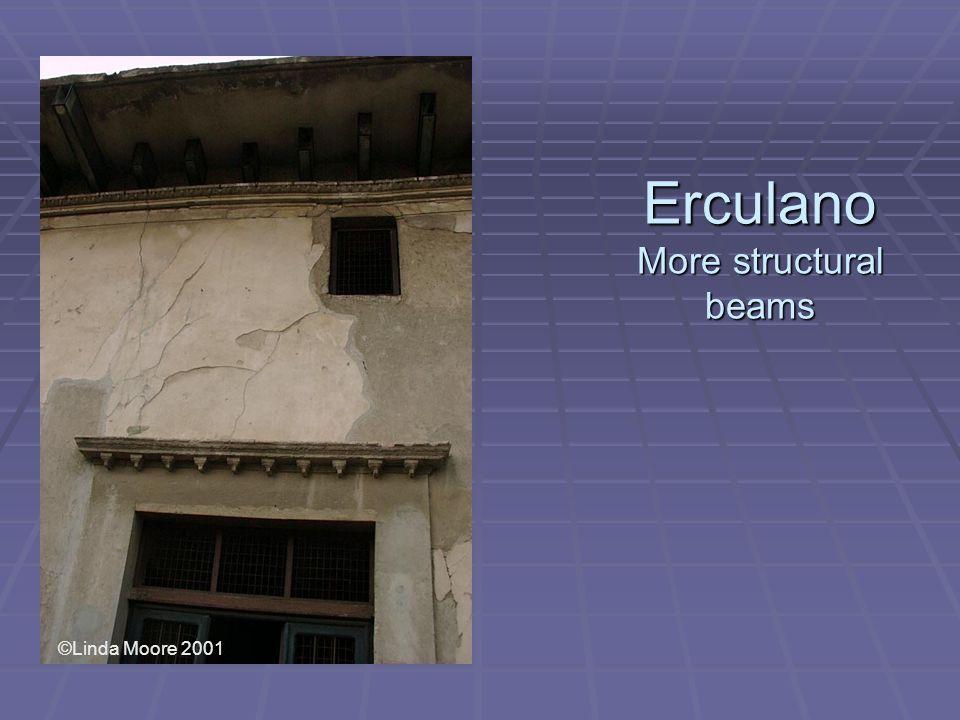 Erculano More structural beams ©Linda Moore 2001