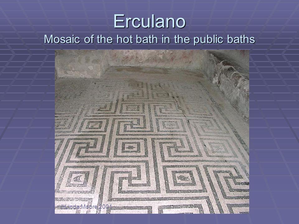 Erculano Mosaic of the hot bath in the public baths ©Linda Moore 2001