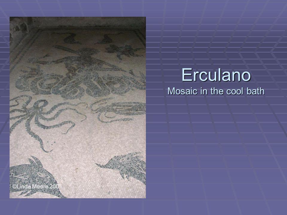 Erculano Mosaic in the cool bath ©Linda Moore 2001