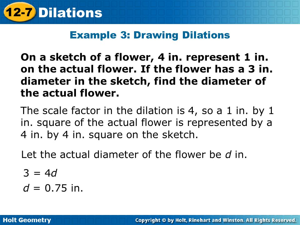 Holt Geometry 12-7 Dilations Example 3: Drawing Dilations On a sketch of a flower, 4 in.