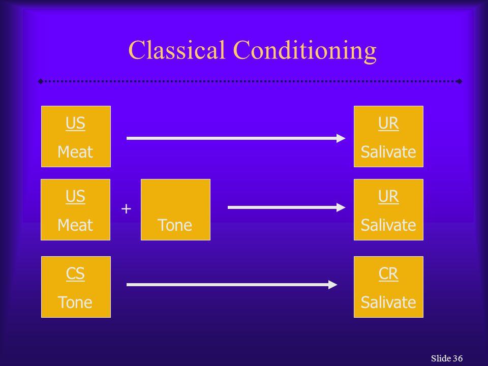 Slide 37 How Do Behaviorists Explain Abnormal Functioning.