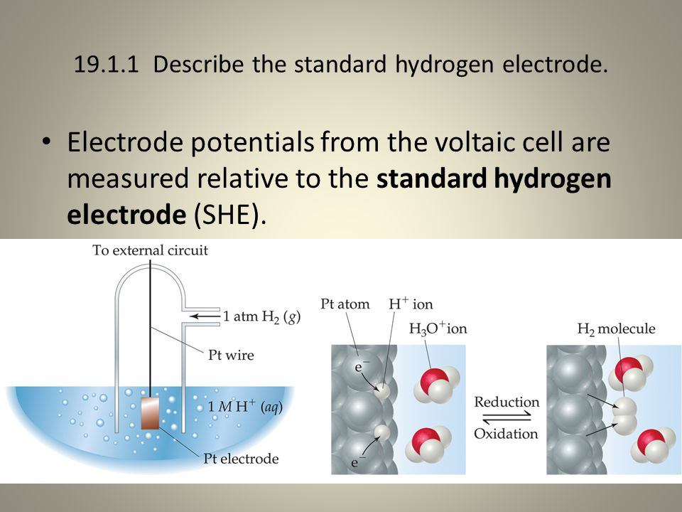 19.1.1 Describe the standard hydrogen electrode. Electrode potentials from the voltaic cell are measured relative to the standard hydrogen electrode (