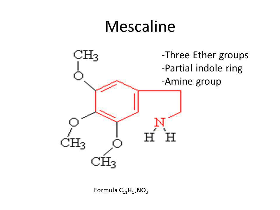 Mescaline Formula C 11 H 17 NO 3 -Three Ether groups -Partial indole ring -Amine group