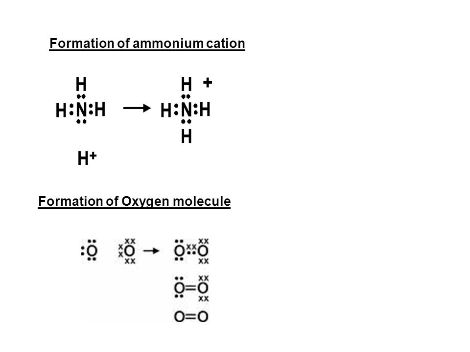 Formation of ammonium cation Formation of Oxygen molecule