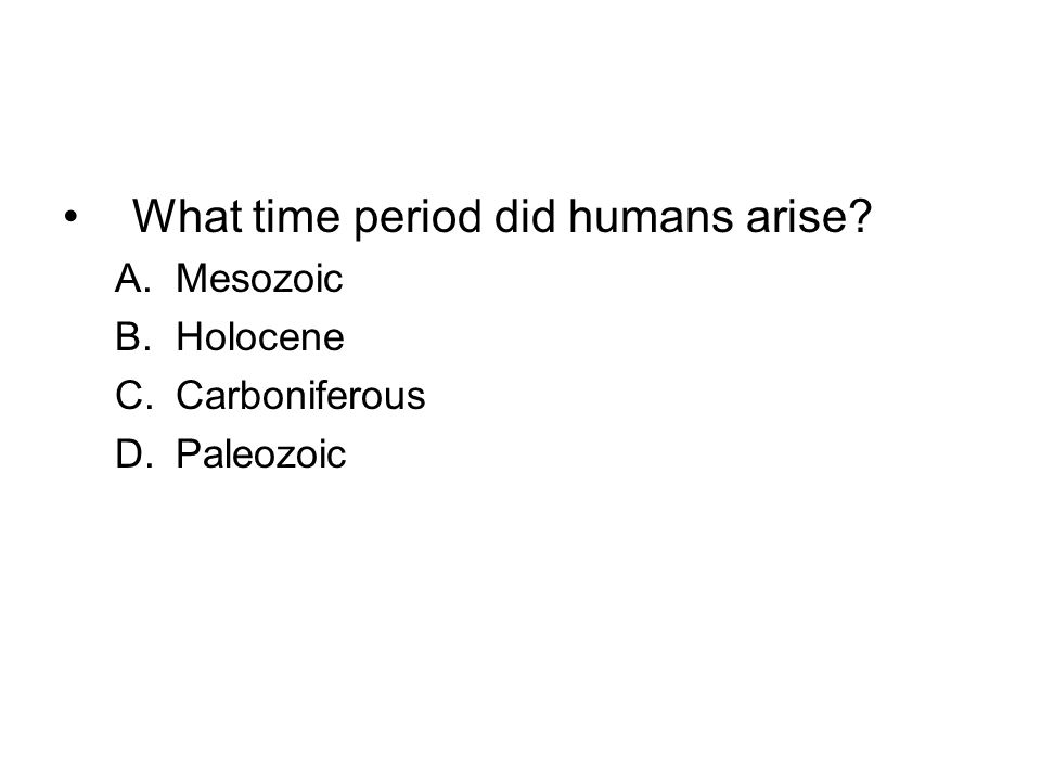 What time period did humans arise? A.Mesozoic B.Holocene C.Carboniferous D.Paleozoic