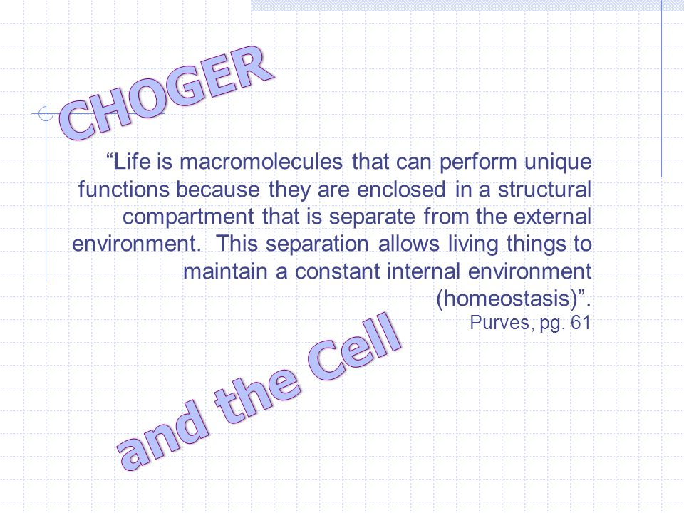 Life is macromolecules that can perform unique functions because they are enclosed in a structural compartment that is separate from the external environment.