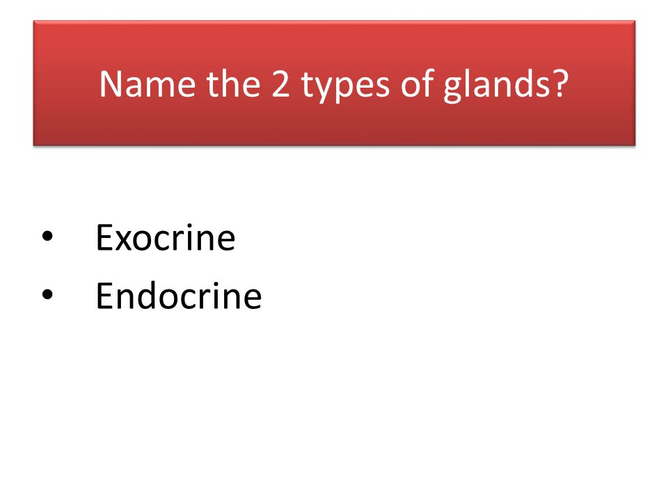 Name the 2 types of glands? Exocrine Endocrine
