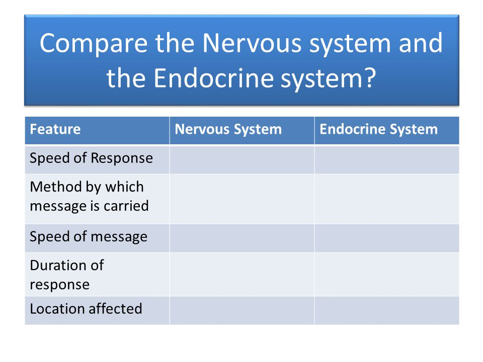 Compare the Nervous system and the Endocrine system.