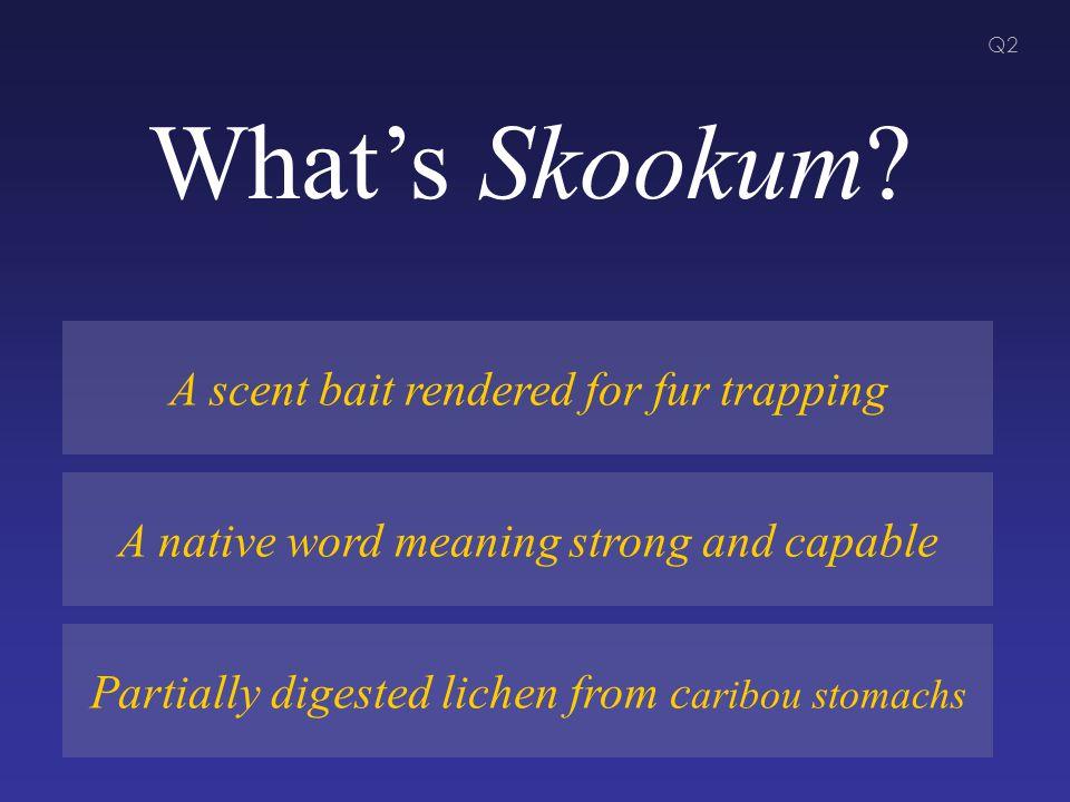 What's Skookum.