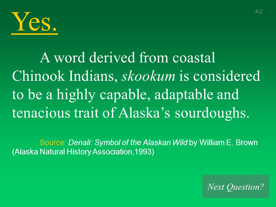 Yes. A2 A word derived from coastal Chinook Indians, skookum is considered to be a highly capable, adaptable and tenacious trait of Alaska's sourdough