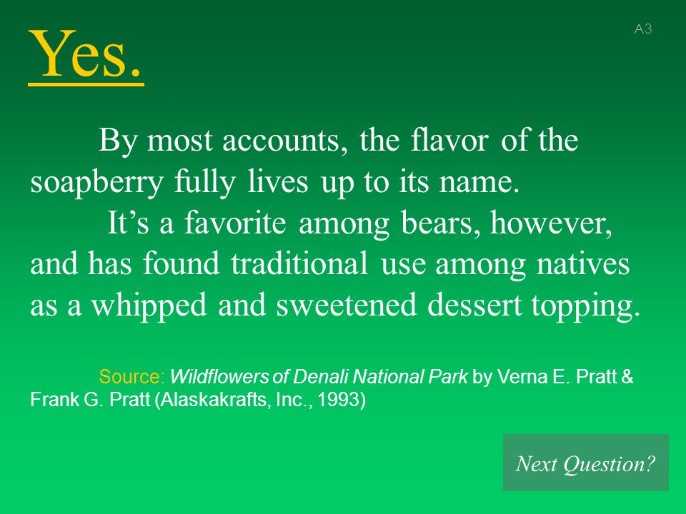 Yes. A3 By most accounts, the flavor of the soapberry fully lives up to its name.