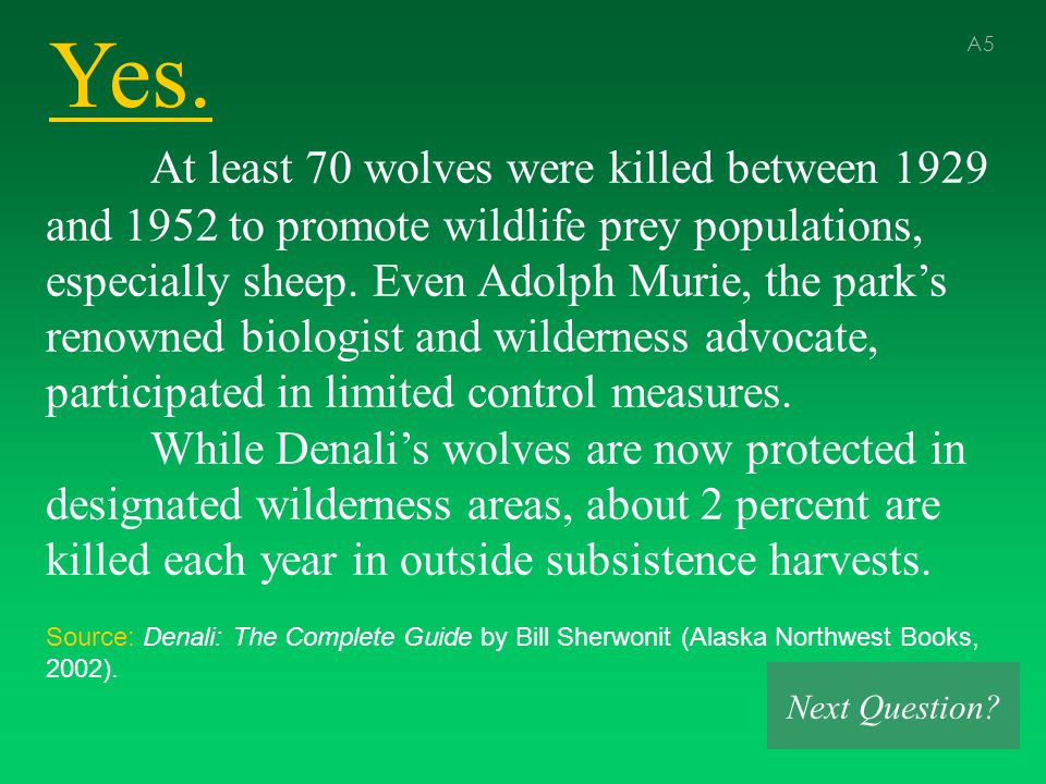 Yes. A5 At least 70 wolves were killed between 1929 and 1952 to promote wildlife prey populations, especially sheep. Even Adolph Murie, the park's ren