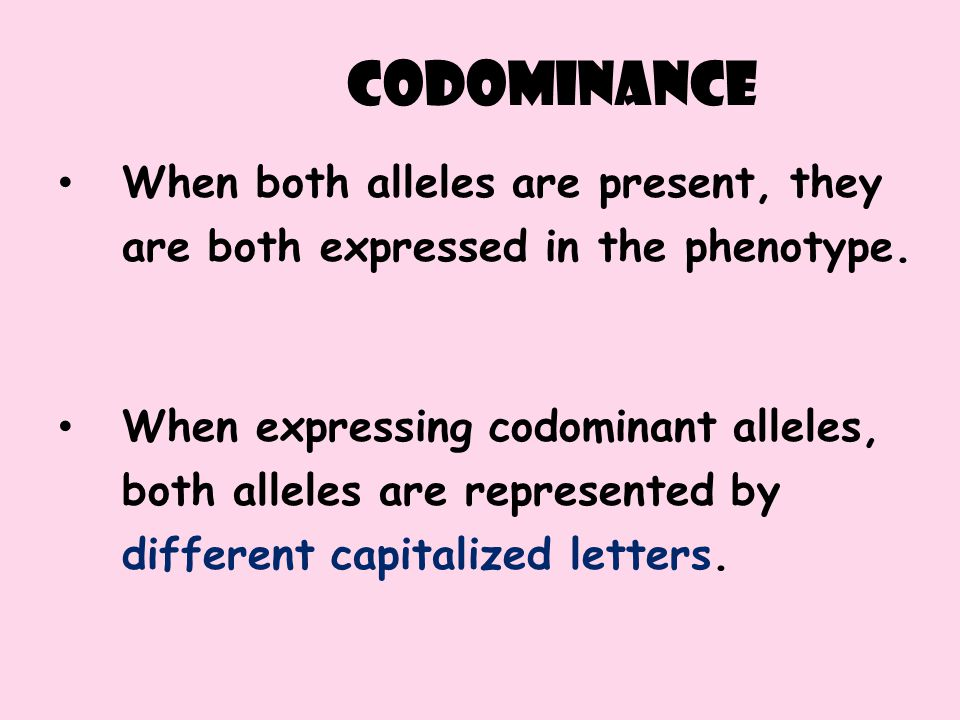 codominance When both alleles are present, they are both expressed in the phenotype. When expressing codominant alleles, both alleles are represented