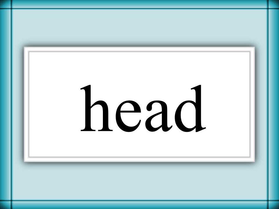 Thornton 2006 head