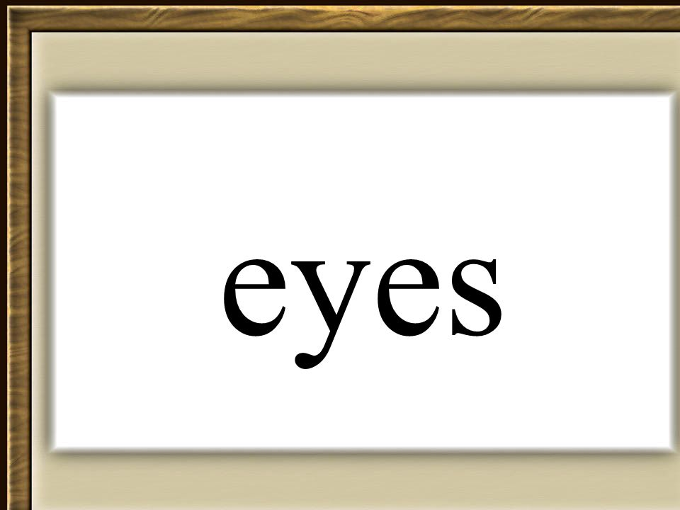 Thornton 2006 eyes