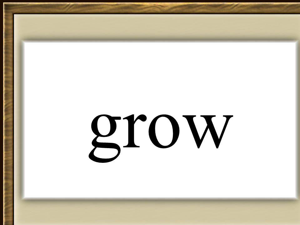 Thornton 2006 grow