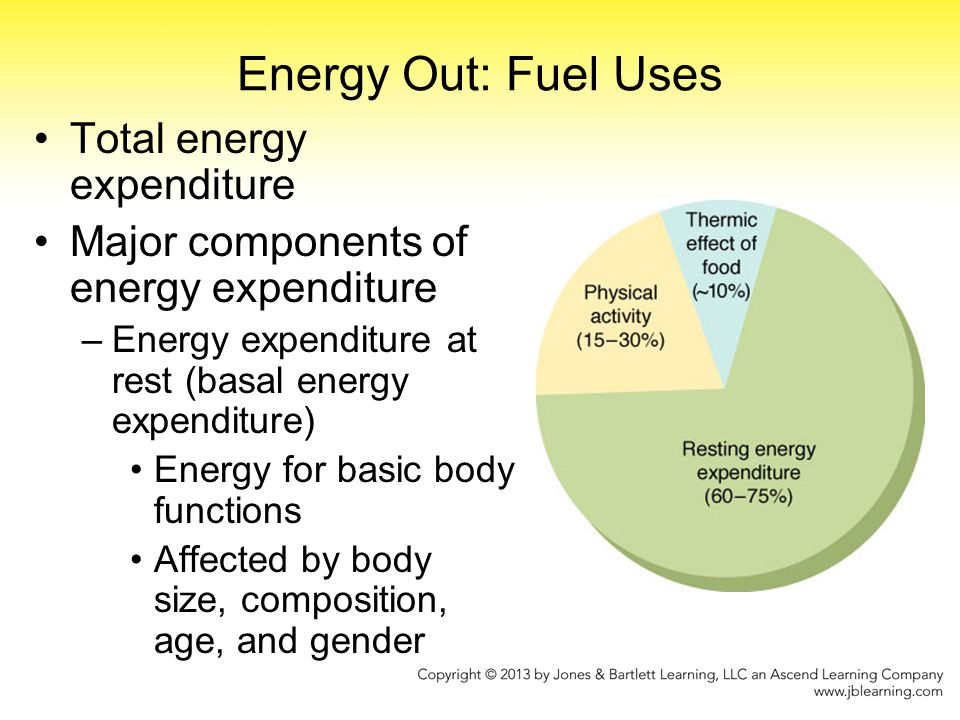 Energy Out: Fuel Uses Major components of energy expenditure –Physical activity Highly variable Affected by body size, fitness level, type of activity –Thermic effect of food (TEF) Energy to digest, absorb, metabolize food