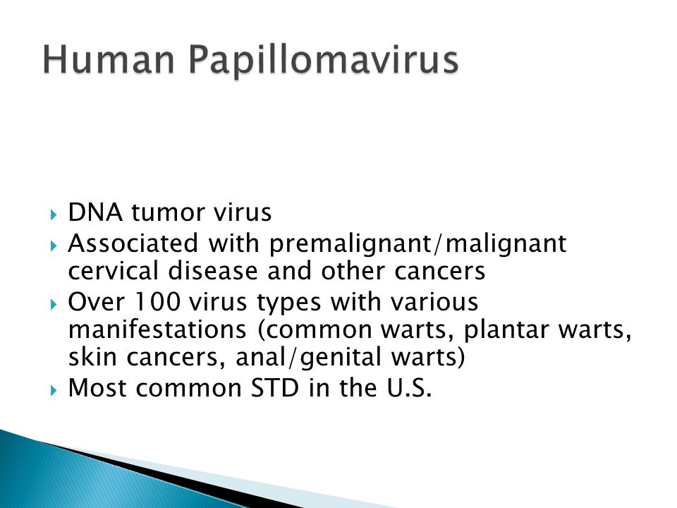  DNA tumor virus  Associated with premalignant/malignant cervical disease and other cancers  Over 100 virus types with various manifestations (common warts, plantar warts, skin cancers, anal/genital warts)  Most common STD in the U.S.