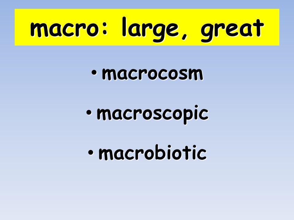 macro: large, great macrocosm macrocosm macroscopic macroscopic macrobiotic macrobiotic