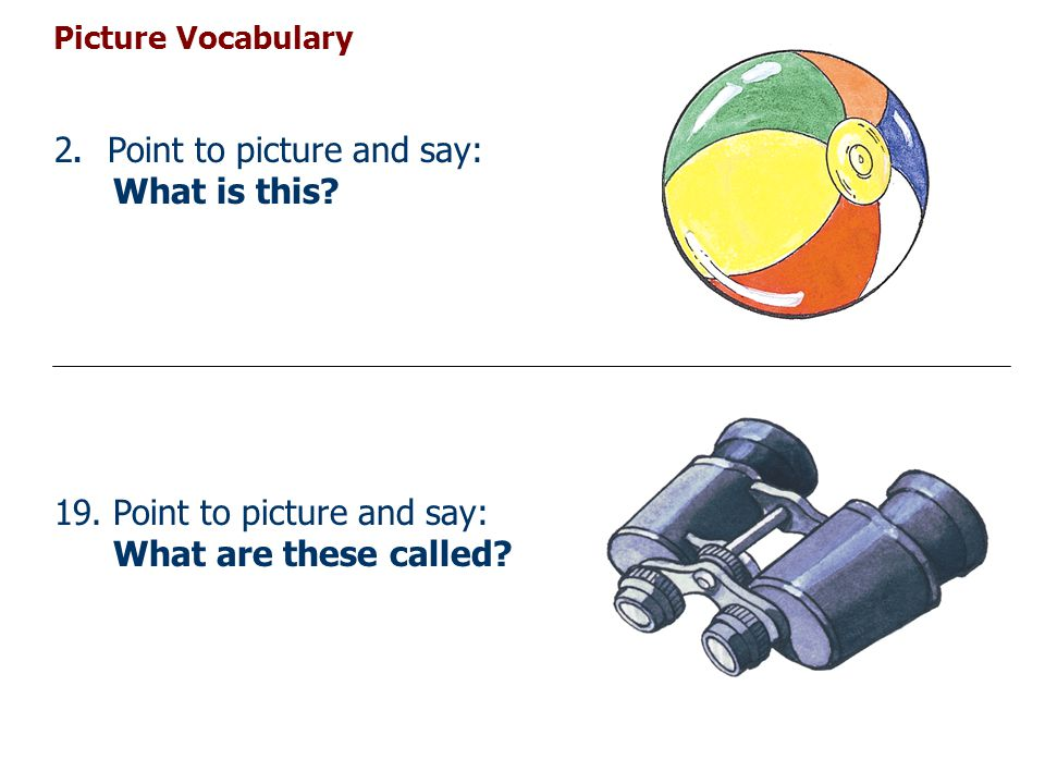 Picture Vocabulary 40.Point to picture and say: What is this called.