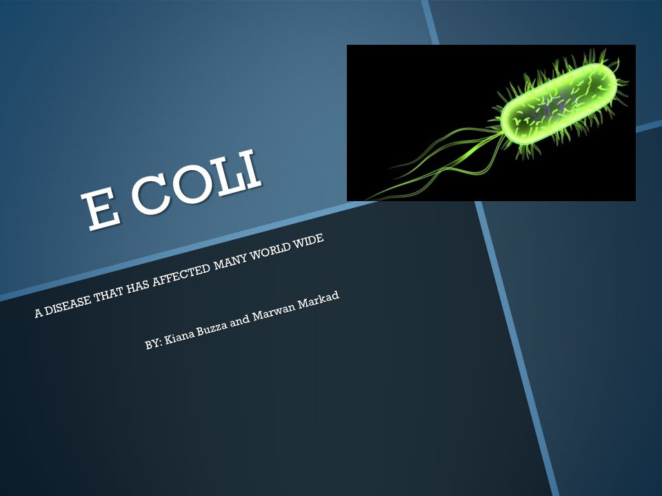 E COLI A DISEASE THAT HAS AFFECTED MANY WORLD WIDE BY: Kiana Buzza and Marwan Markad