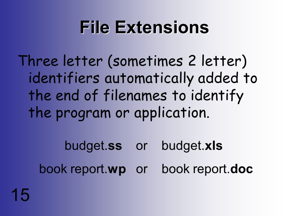 15 File Extensions Three letter (sometimes 2 letter) identifiers automatically added to the end of filenames to identify the program or application.