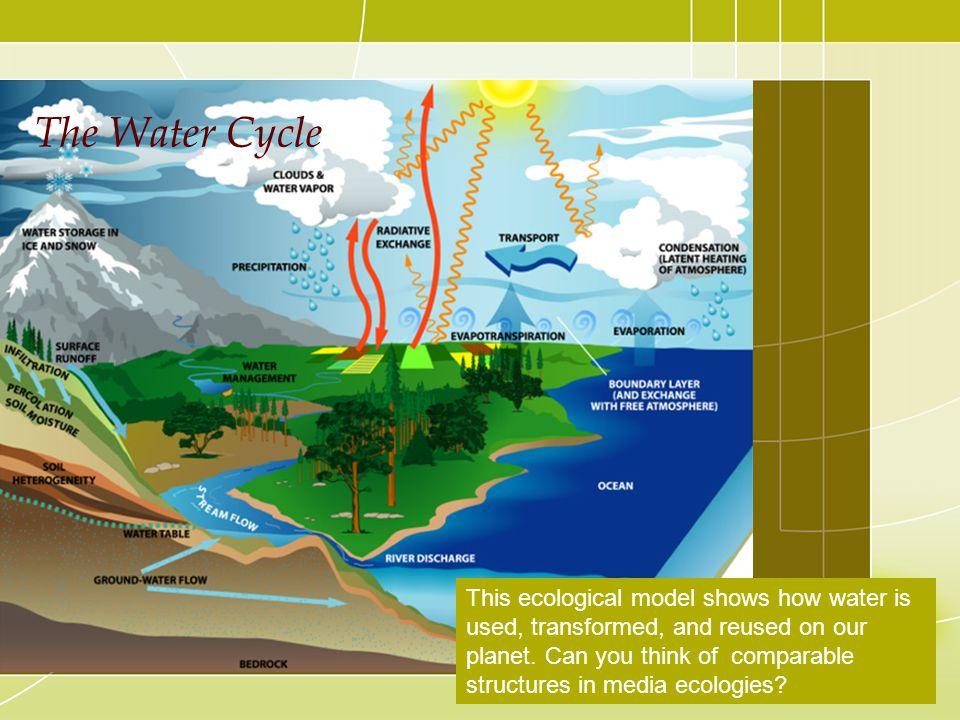 The Water Cycle This ecological model shows how water is used, transformed, and reused on our planet. Can you think of comparable structures in media