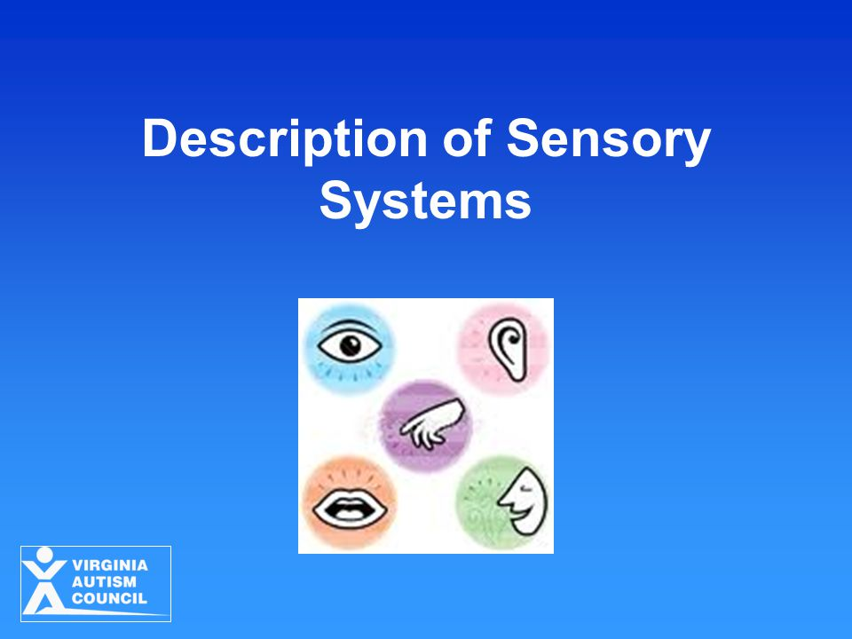 Description of Sensory Systems