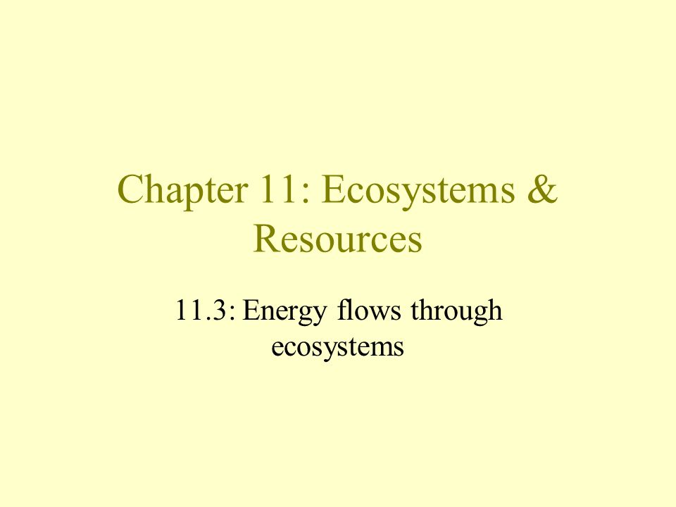 Chapter 11: Ecosystems & Resources 11.3: Energy flows through ecosystems