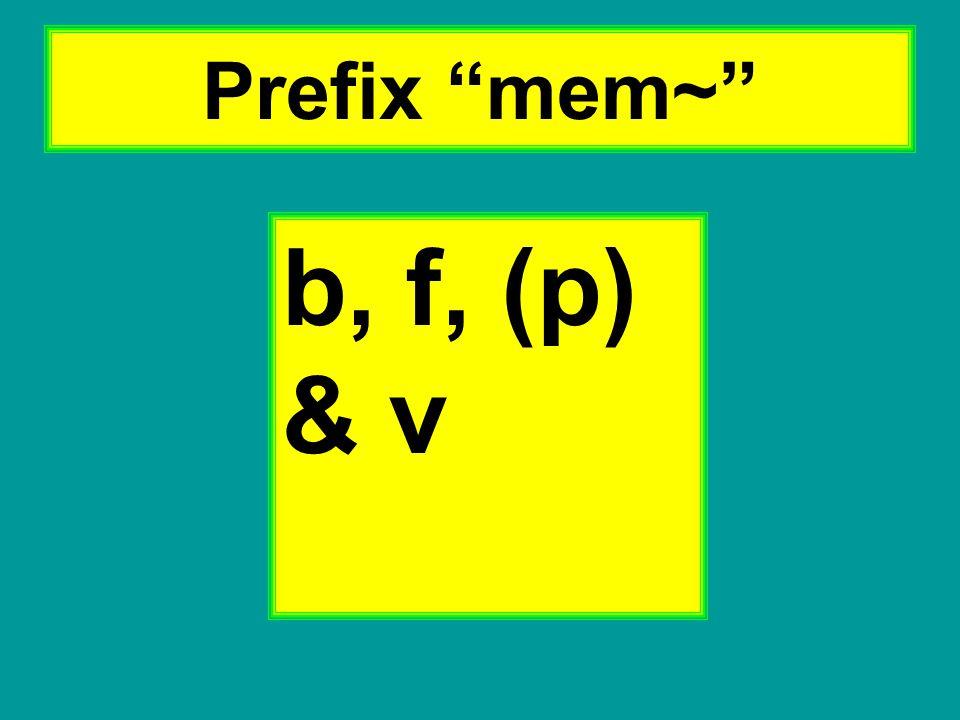 """Prefix """"mem~"""" b, f, (p) & v"""