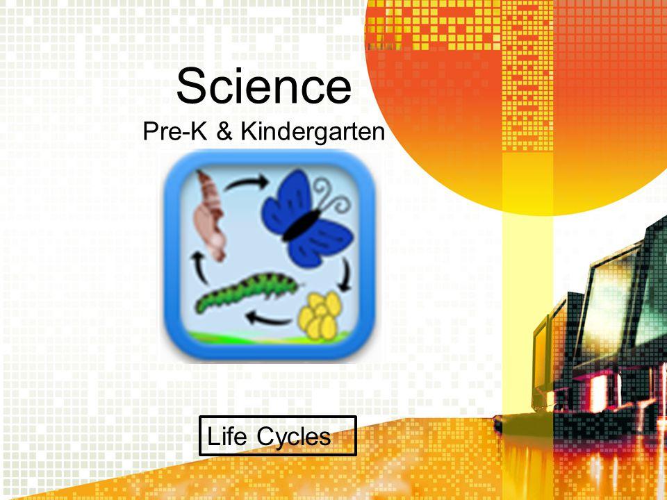 Science Kindergarten & Pre-K Body Parts