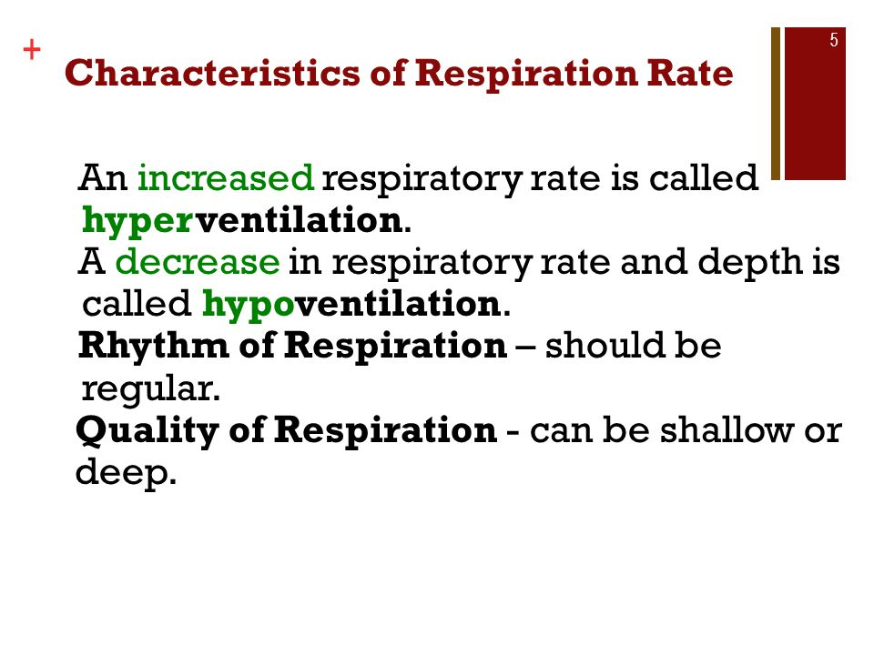 Copyright © The McGraw-Hill Companies, Inc. + Characteristics of Respiration Rate 5 An increased respiratory rate is called hyperventilation. A decrea
