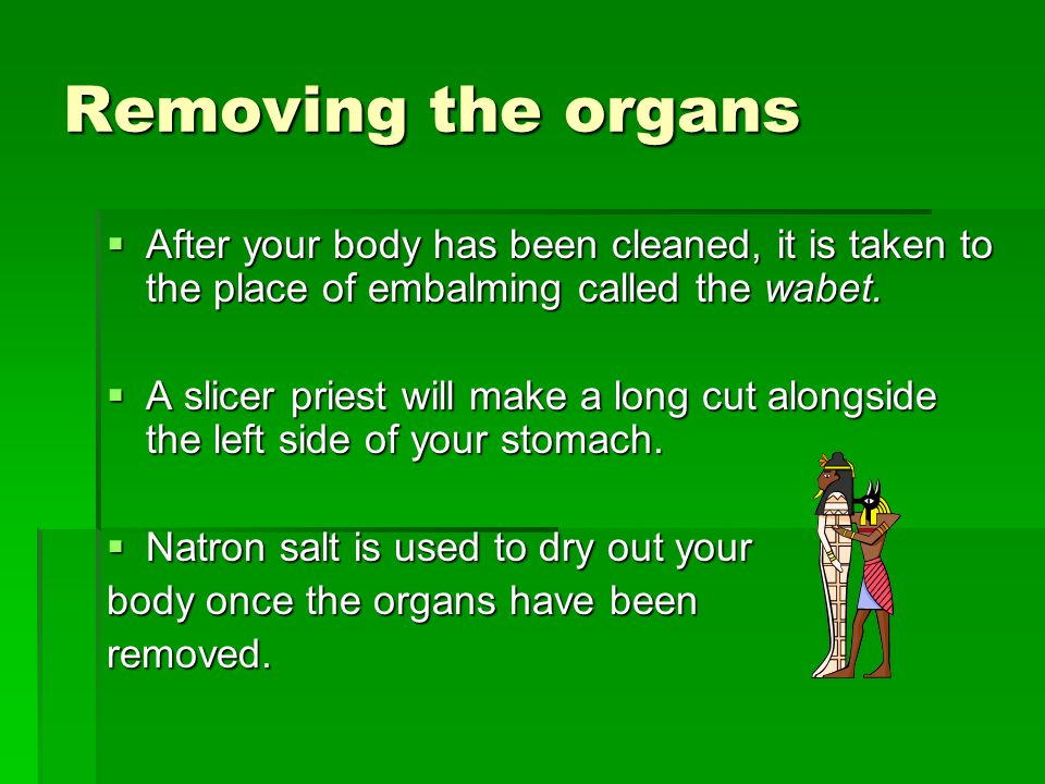 Removing the organs  After your body has been cleaned, it is taken to the place of embalming called the wabet.  A slicer priest will make a long cut
