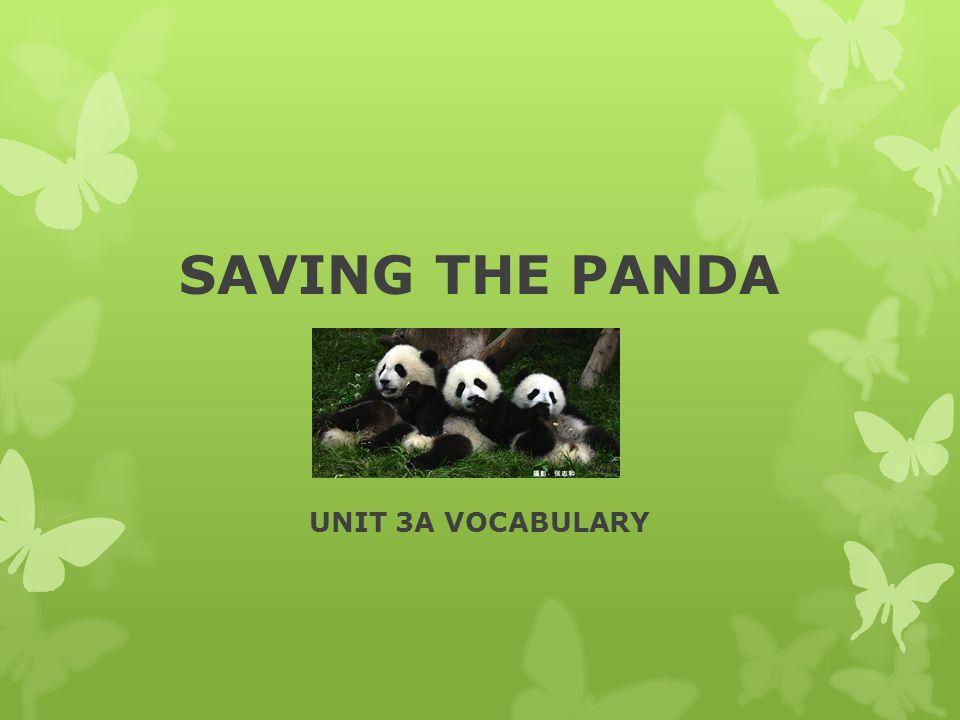 SAVING THE PANDA UNIT 3A VOCABULARY