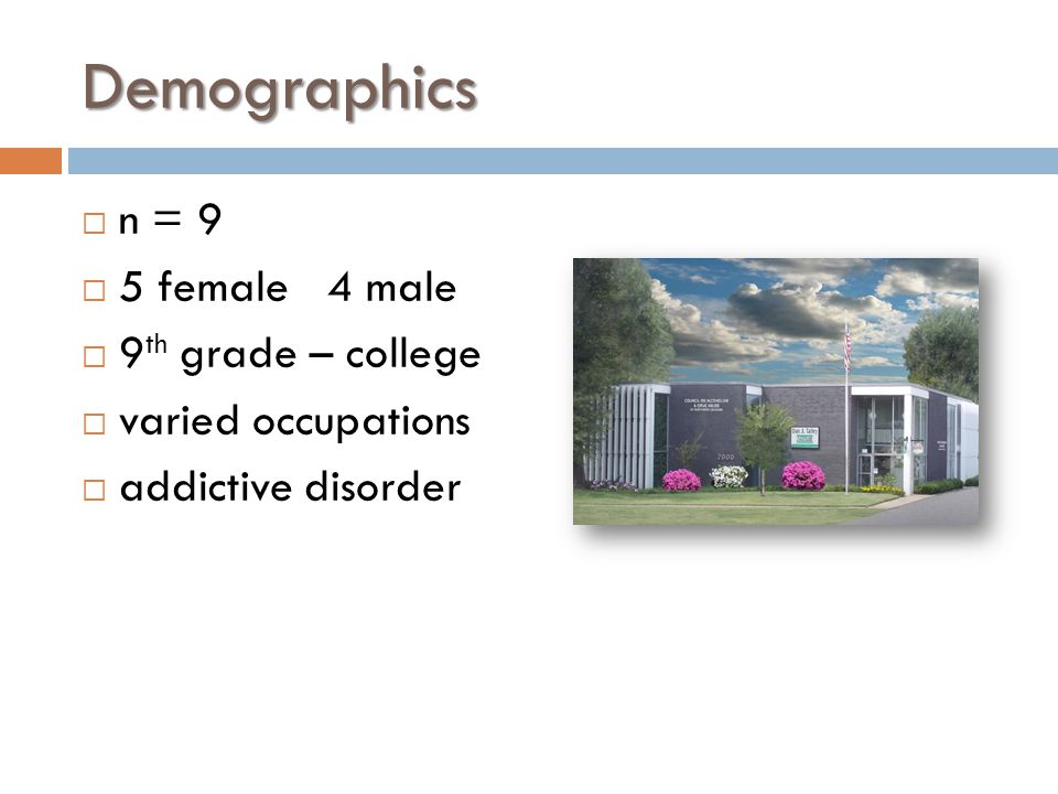 Demographics  n = 9  5 female 4 male  9 th grade – college  varied occupations  addictive disorder