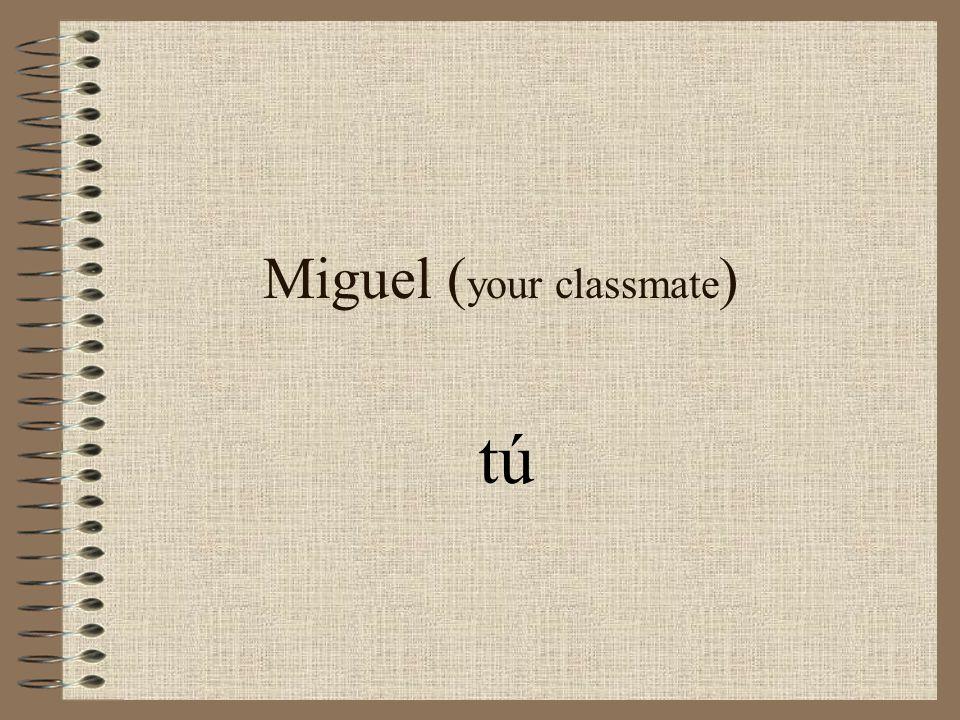 Miguel ( your classmate ) tú