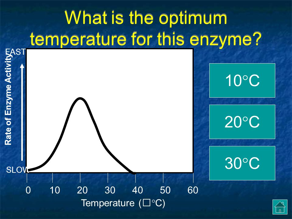 Let's GRAPH!.Click on the OPTIMUM TEMPERATURE for amylase.