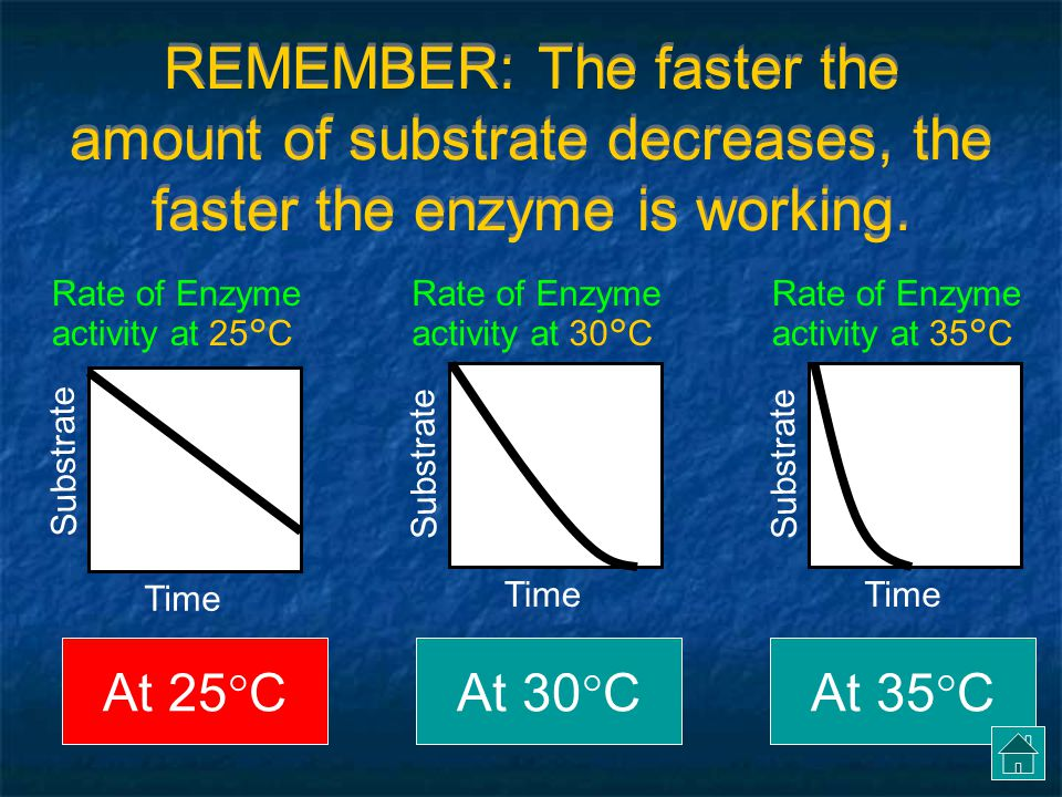 At what temperature does this enzyme work best.