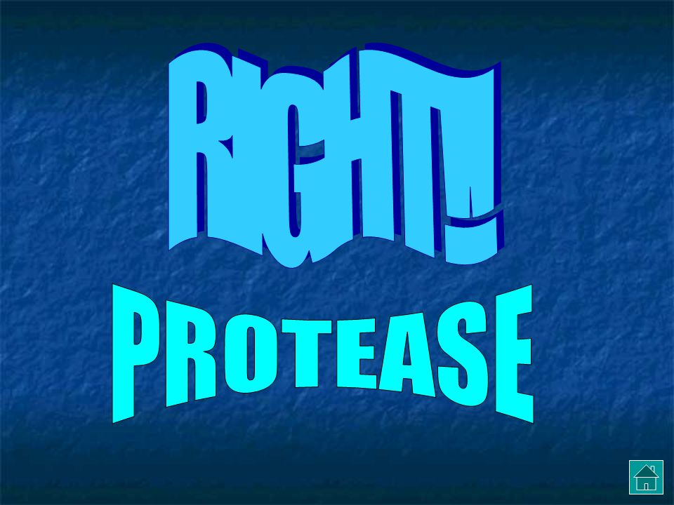 NOPE: think about lactase and amylase PROTEOSE PROTEASEPROTOZOA PROTEINATION