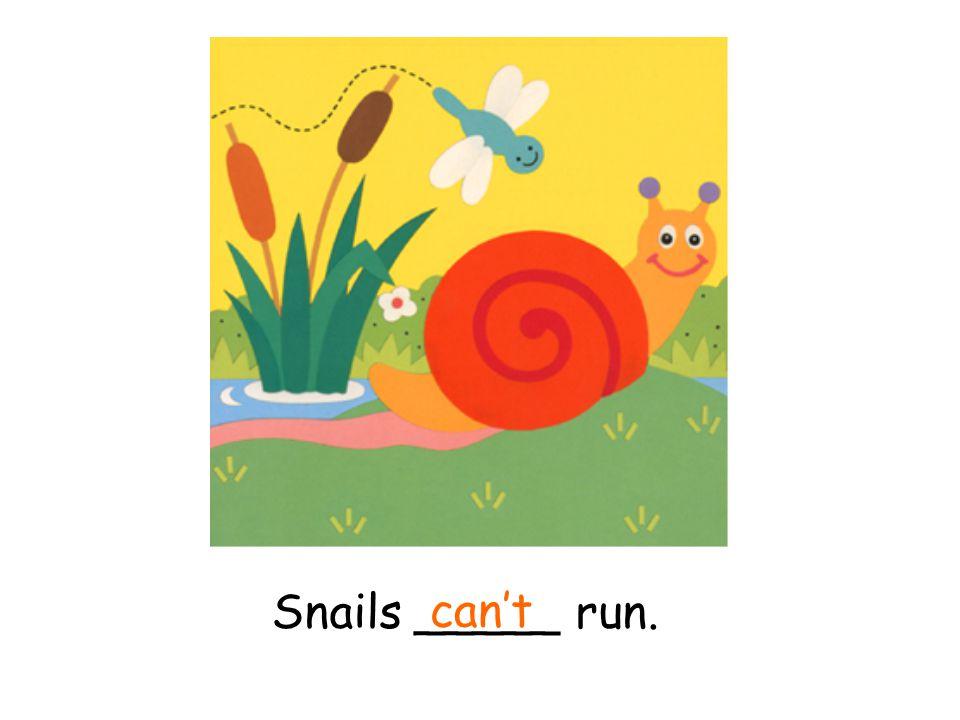 Snails _____ run. can't