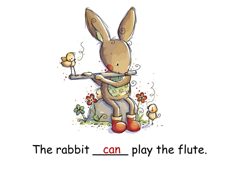The rabbit _____ play the flute. can