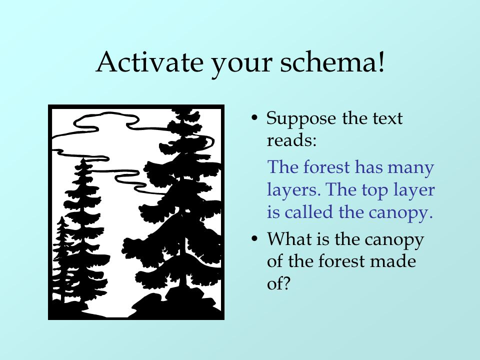 Activate your schema! Suppose the text reads: The forest has many layers. The top layer is called the canopy. What is the canopy of the forest made of