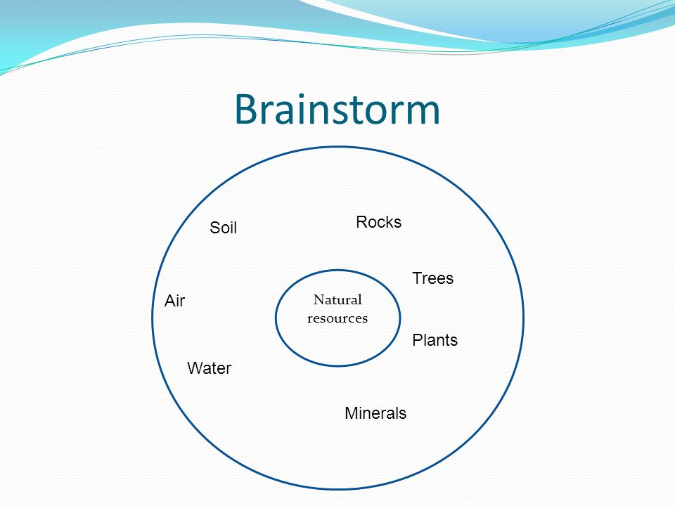 Brainstorm Natural resources Soil Rocks Minerals Trees Water Air Plants